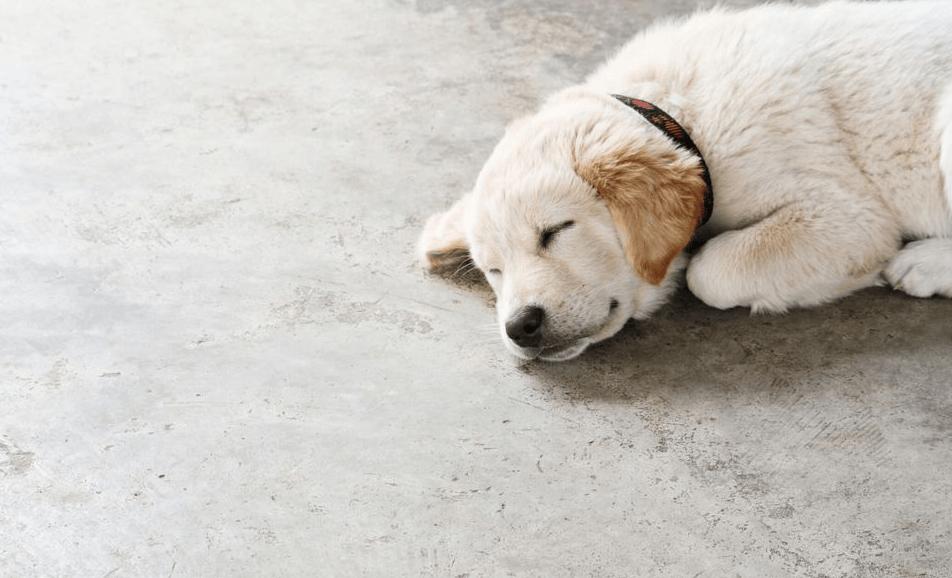 Метод ремонта бетонного пола