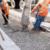 Цементобетонные дороги завоевывают Европу